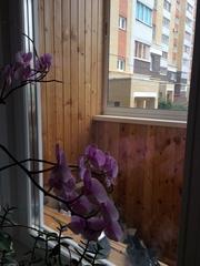 Квартира своб планировки,  136 м2,  гараж 22 м2,  Волжский-3. Продажа